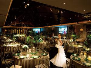 ロビーチャペル 1月リニューアル! Forest Veil Wedding