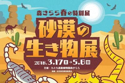 <3/17~5/6><br>【森きらら】春の特別展「砂漠の生き物展」