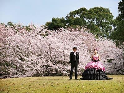 """""""ふたりの結婚式""""のイメージを高める<br>春のウエディングイベントを実施!"""
