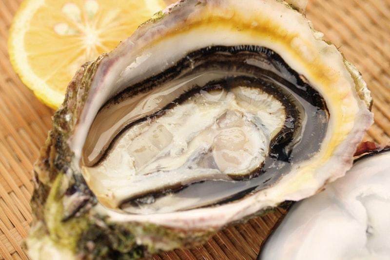 夏が旬の「九十九島岩牡蠣」を<br>海の上のカキ小屋で!