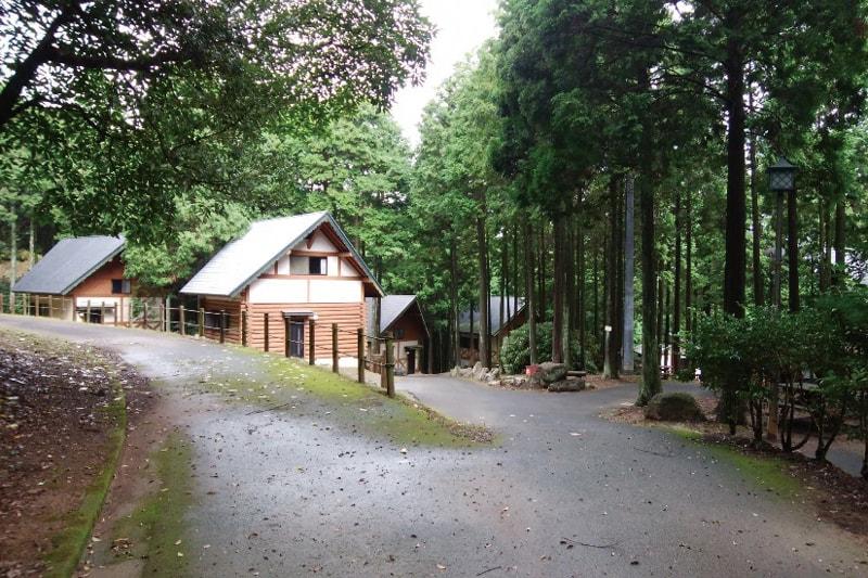 夏をおもいっきり満喫することができる<br>〈県民の森〉へGO!
