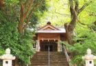 """〈山王神社vol.2〉修学旅行で自慢できる! 山王神社""""もう一歩""""踏み込んだおはなし。"""