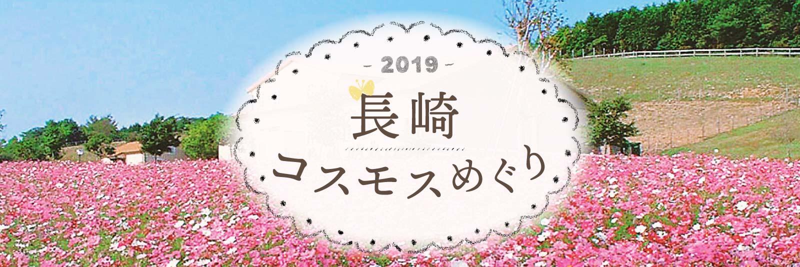 2019 秋 コスモス 秋桜 長崎 ながさき