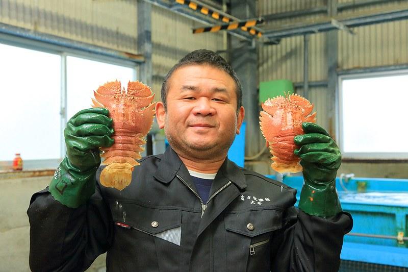 長崎県平戸産のうちわ海老を持つ漁業の方
