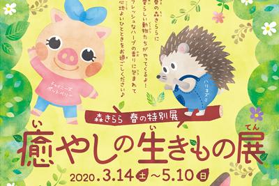 【臨時休業】森きらら 春の特別展「癒やしの生きもの展」2020/3/14(土)~5/10(日)