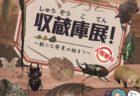 〈長崎市・雲仙市〉ArtBrut Creation Nippon in NAGASAKI 2020/9/17(木)~9/26(土)