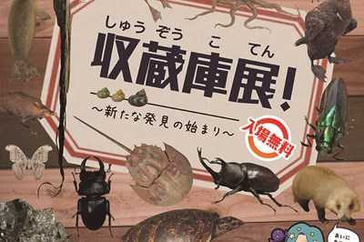 〈長崎市科学館〉夏の企画展 収蔵庫展!~新たな発見の始まり~ 2020/9/22(火・祝)まで