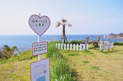 〈西海市Vol.3〉西海のオススメエリア②松島